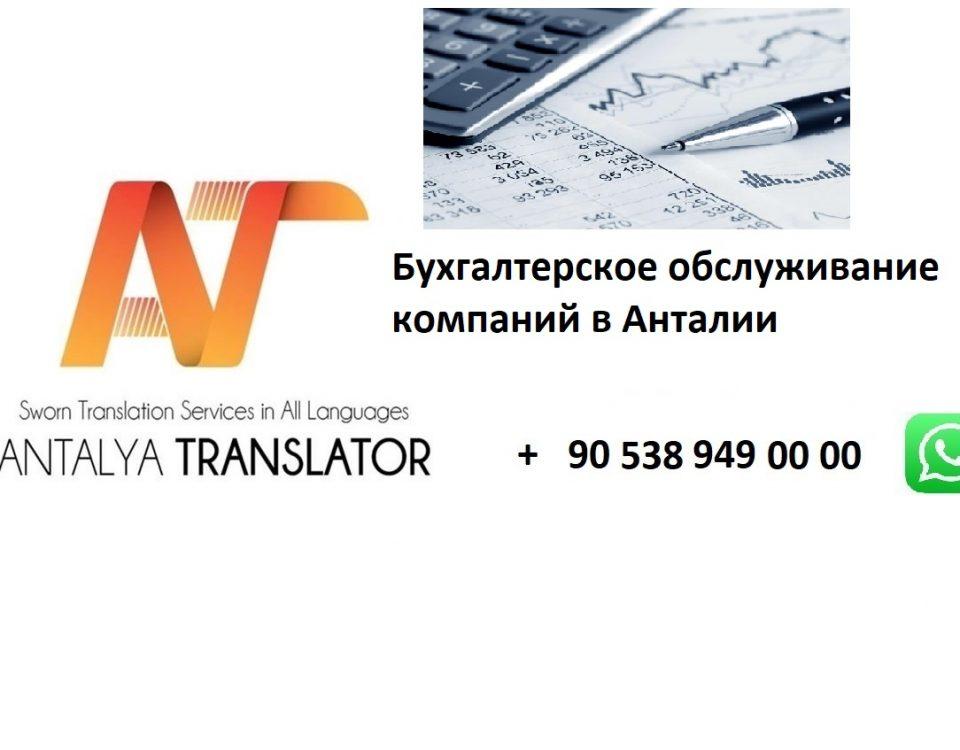 Бухгалтерское обслуживание компаний в Анталии