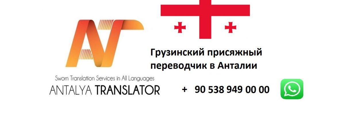 Грузинский присяжный переводчик в Анталии