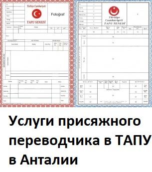 Услуги присяжного переводчика в ТАПУ в Анталии